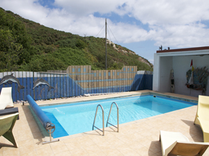 Shared pool area