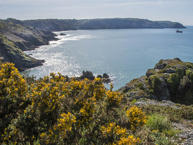 The North coast cliff path is nearby - view towards Bouley Bay