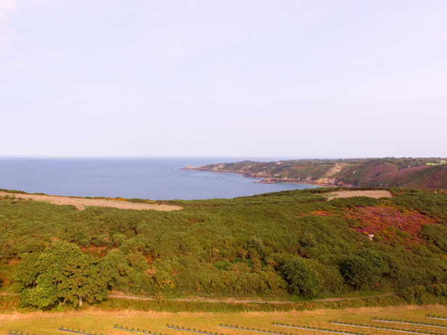 Views surrounding Sea View Cottage - including tea plantations in the foreground