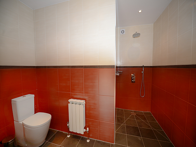 Ground floor Wet room with shower, basin and toilet