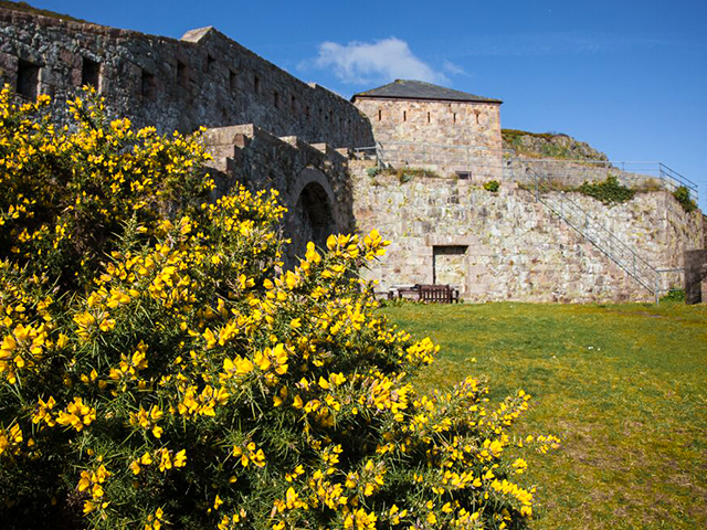 Lawned areas around the Fort