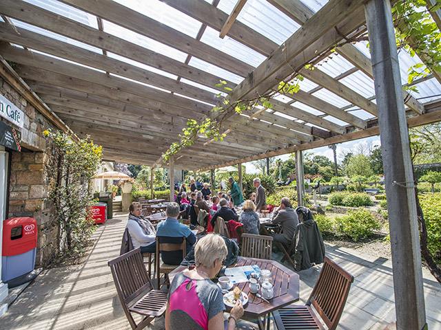 Enjoy breakfast or lunch in the Herb Garden Cafe, Samares Manor